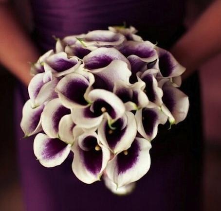 bridesmaids-picasso calla.jpg