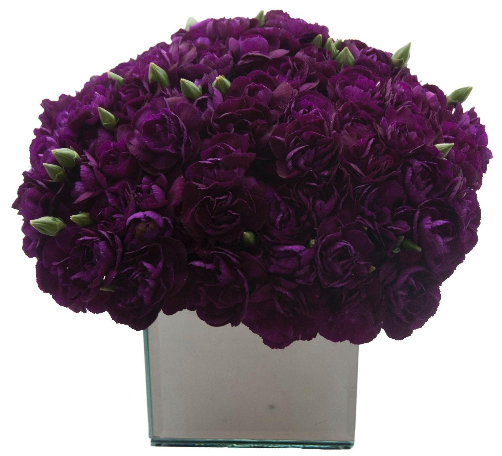 Purple Spray Carnations