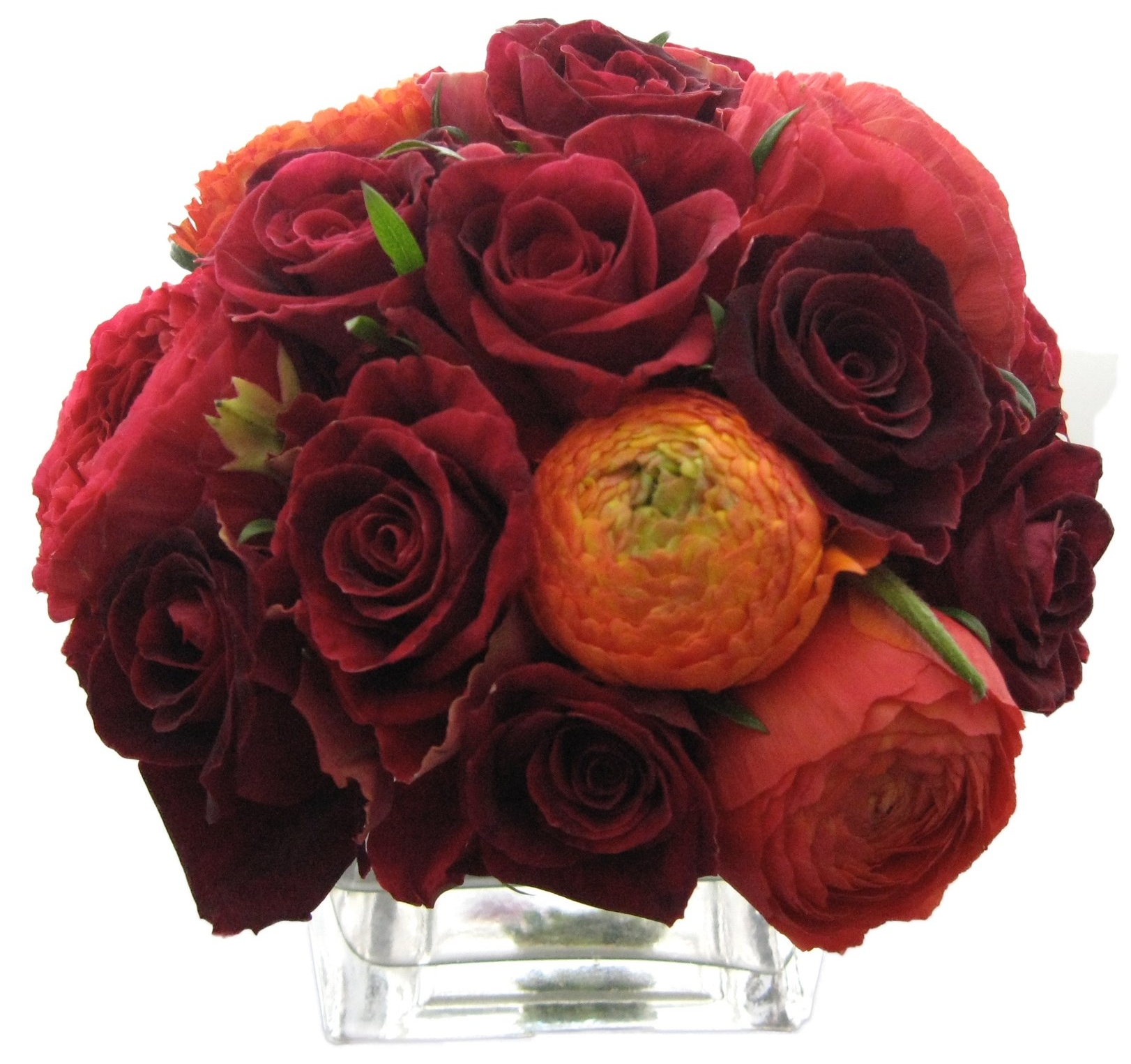 red rose and coral peony mix.jpg