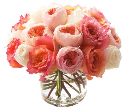 Pastel Garden Roses start at $200