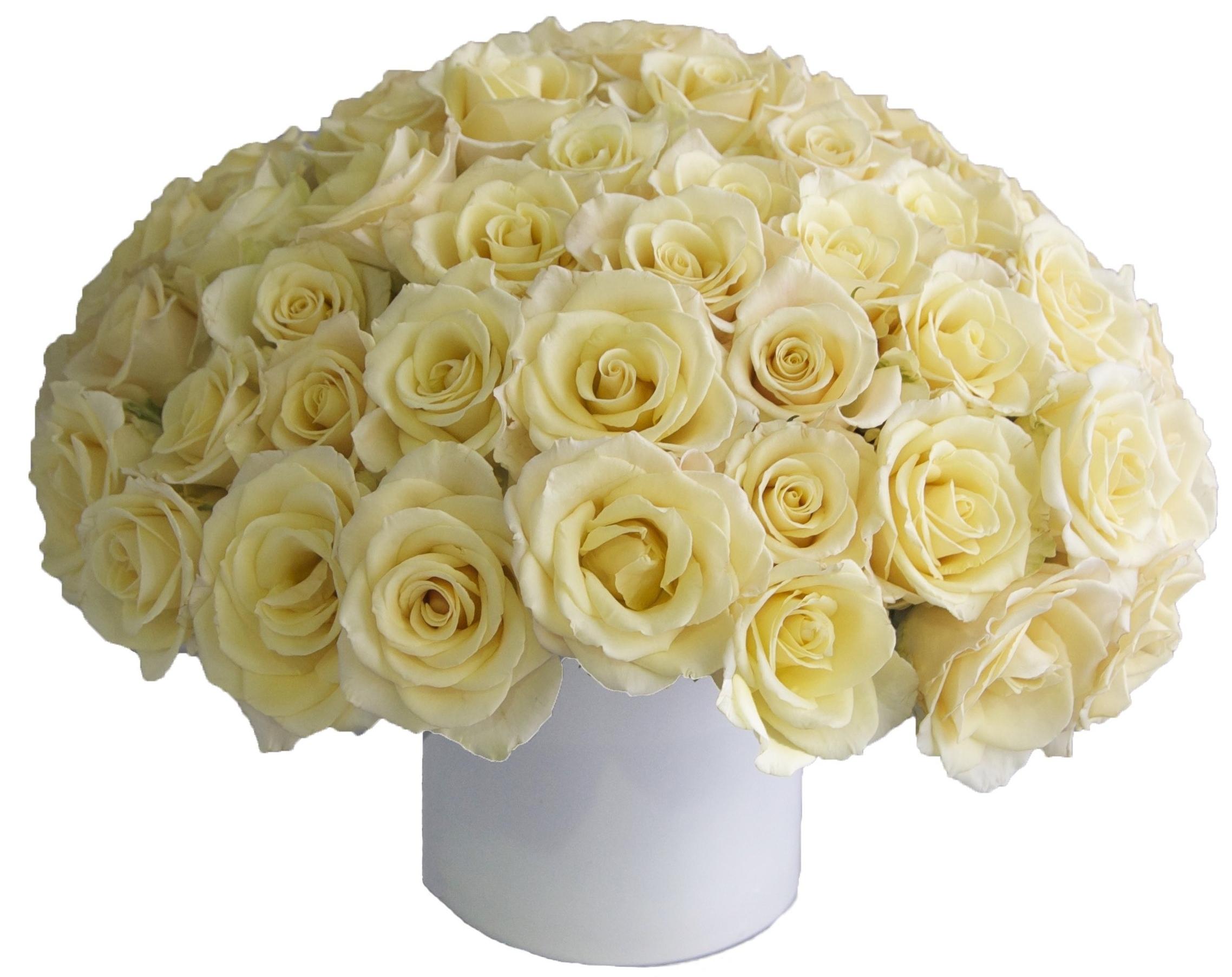 Creme Roses start at $200
