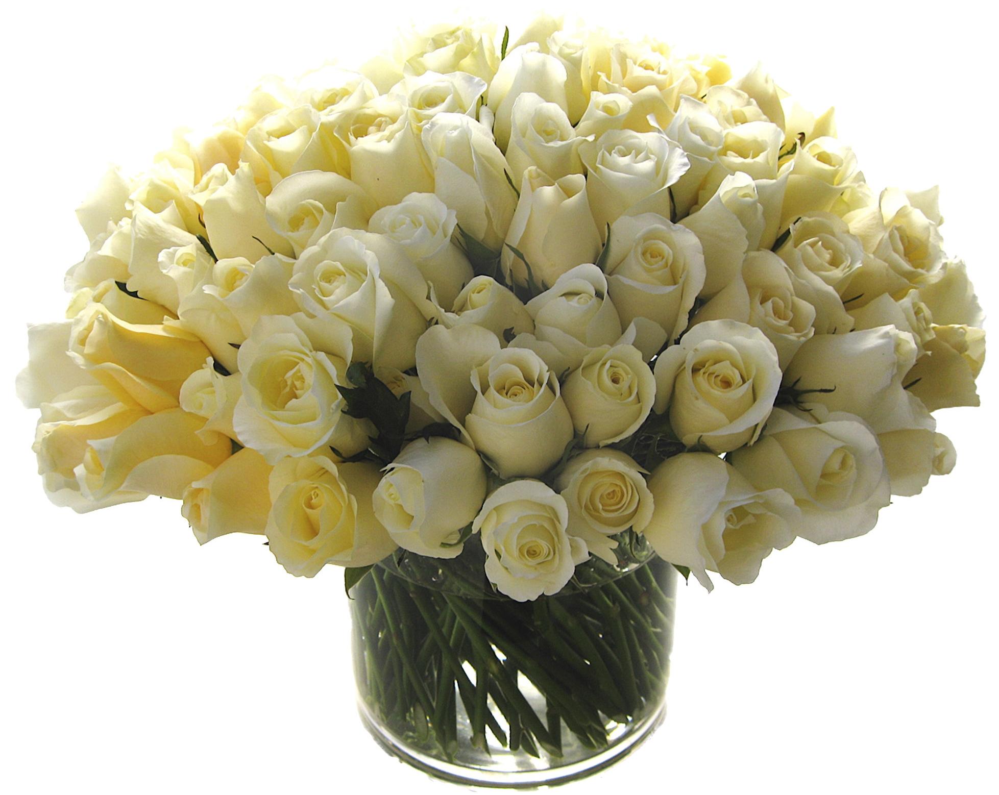 Butter Roses start at $150