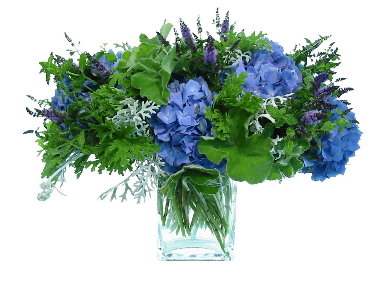 Herbal Blue Hydrangea Comp starts at $225