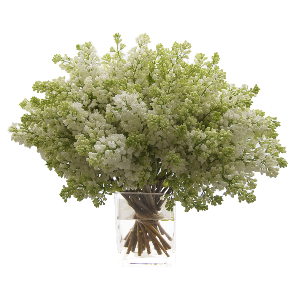 White Lilac Starting at $150