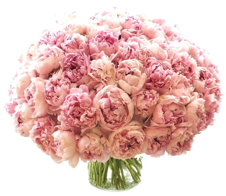 Luxe Peonies starting at $975