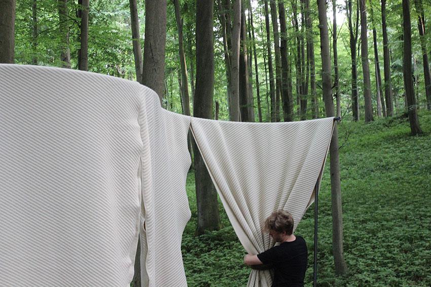 Forest-IMG_1412.jpg