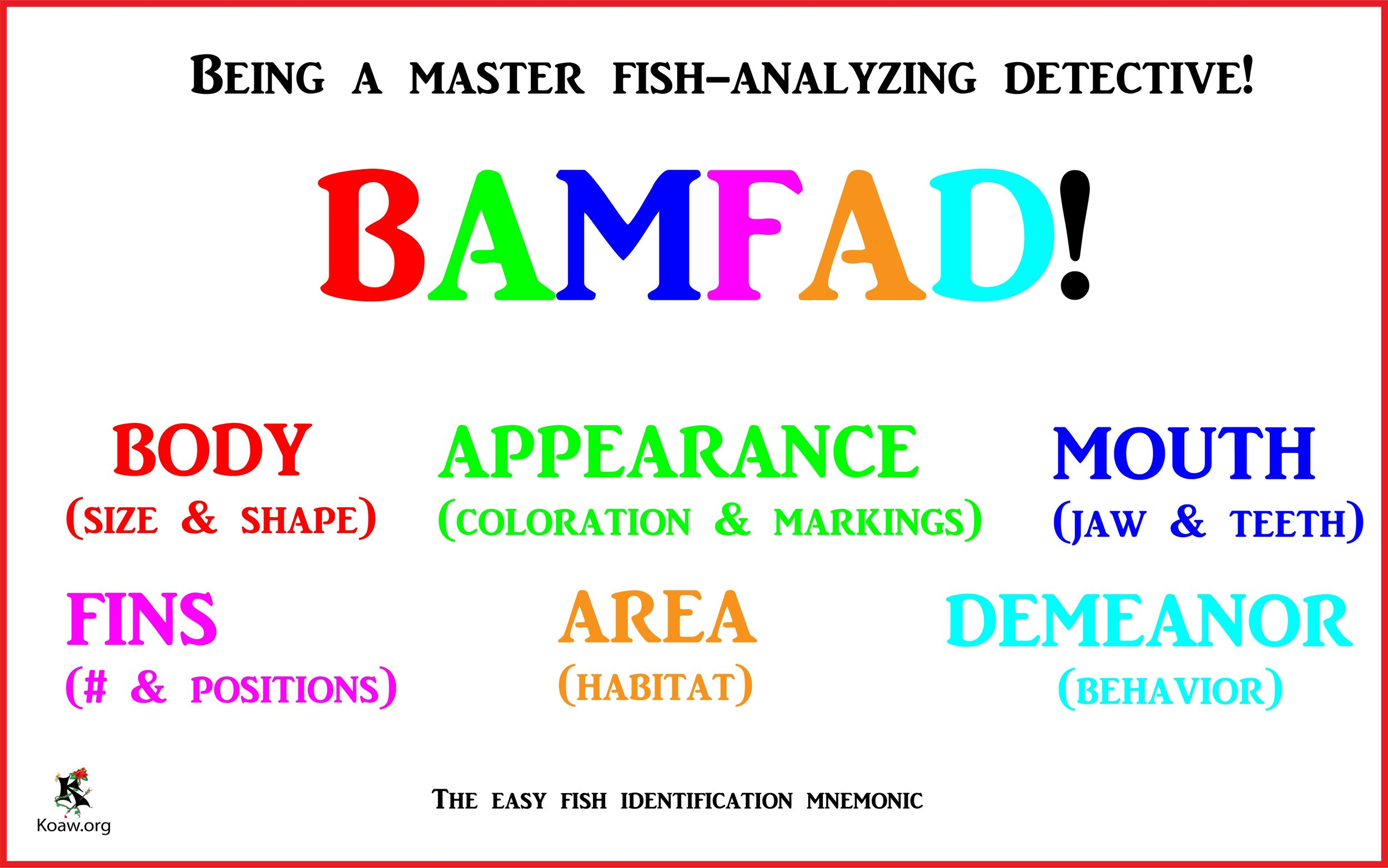BAMFAD Being a master fish-analyzing detective! - by Koaw