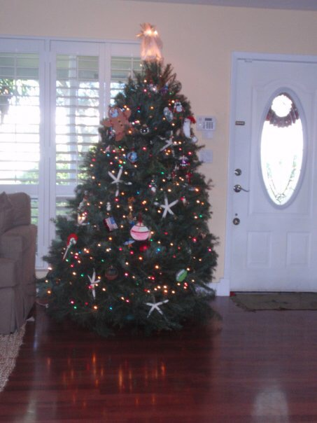 Our Tree Then...