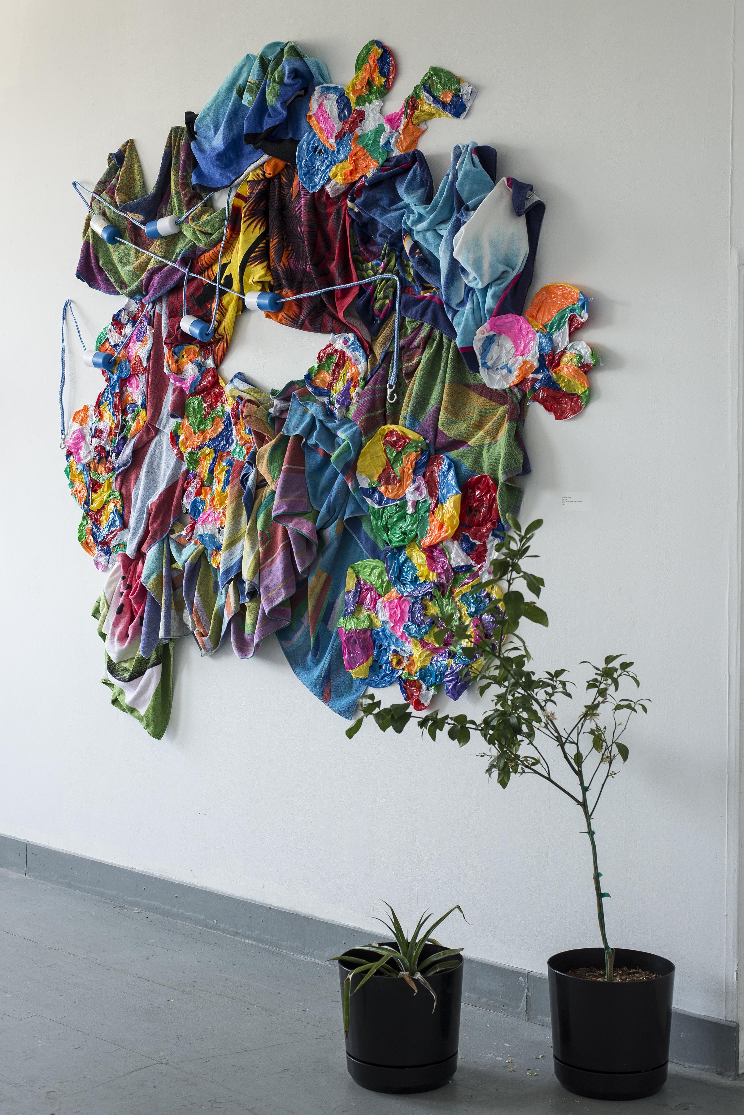 Day Trip    Mixed Media Installation, Pineapple Plant, Meyer Lemon Tree  14'x12'  2015
