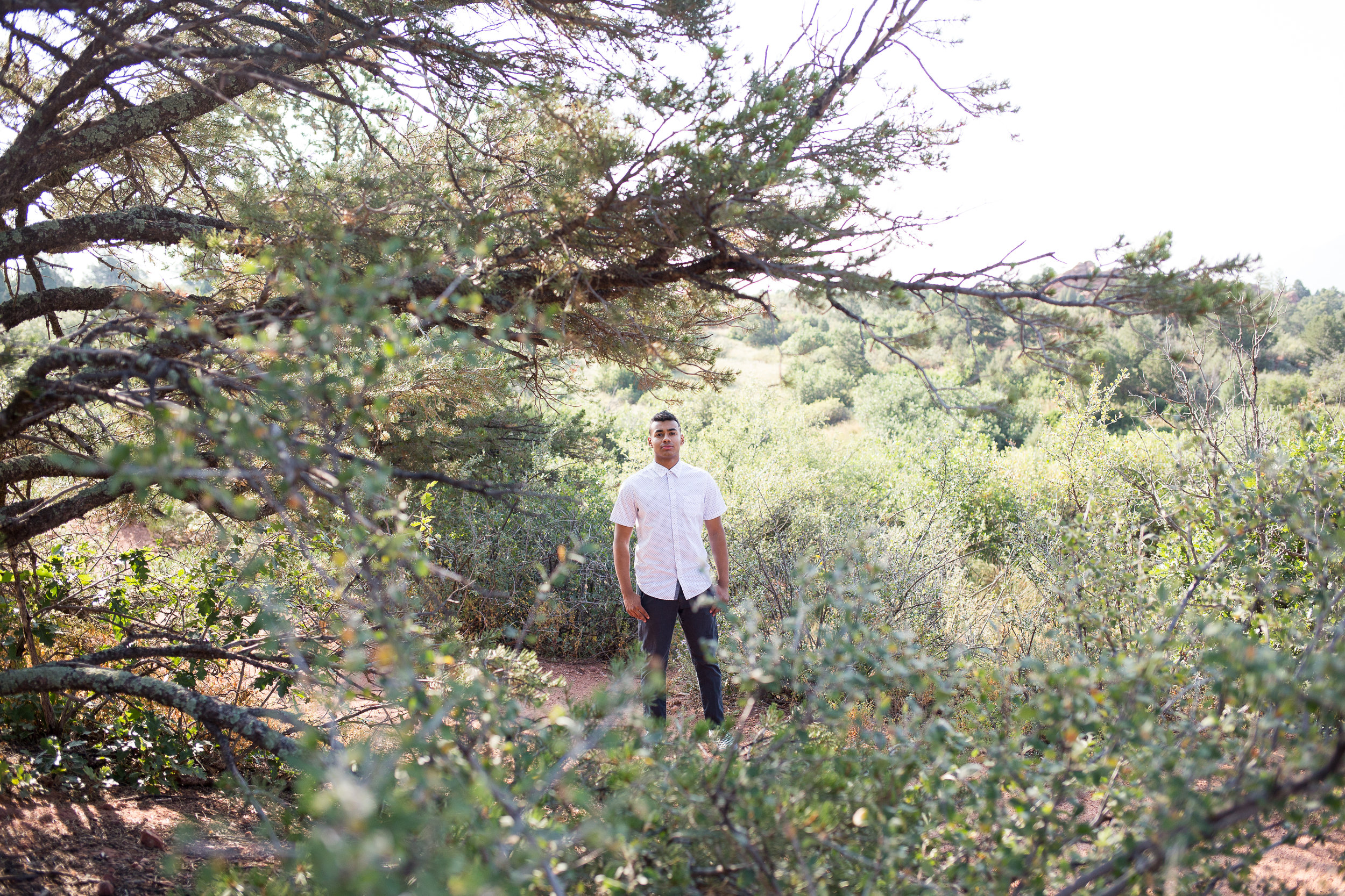 Liberty High School Senior boy standing among the trees in Garden of the Gods looking at the camera, Stacy Carosa Photography