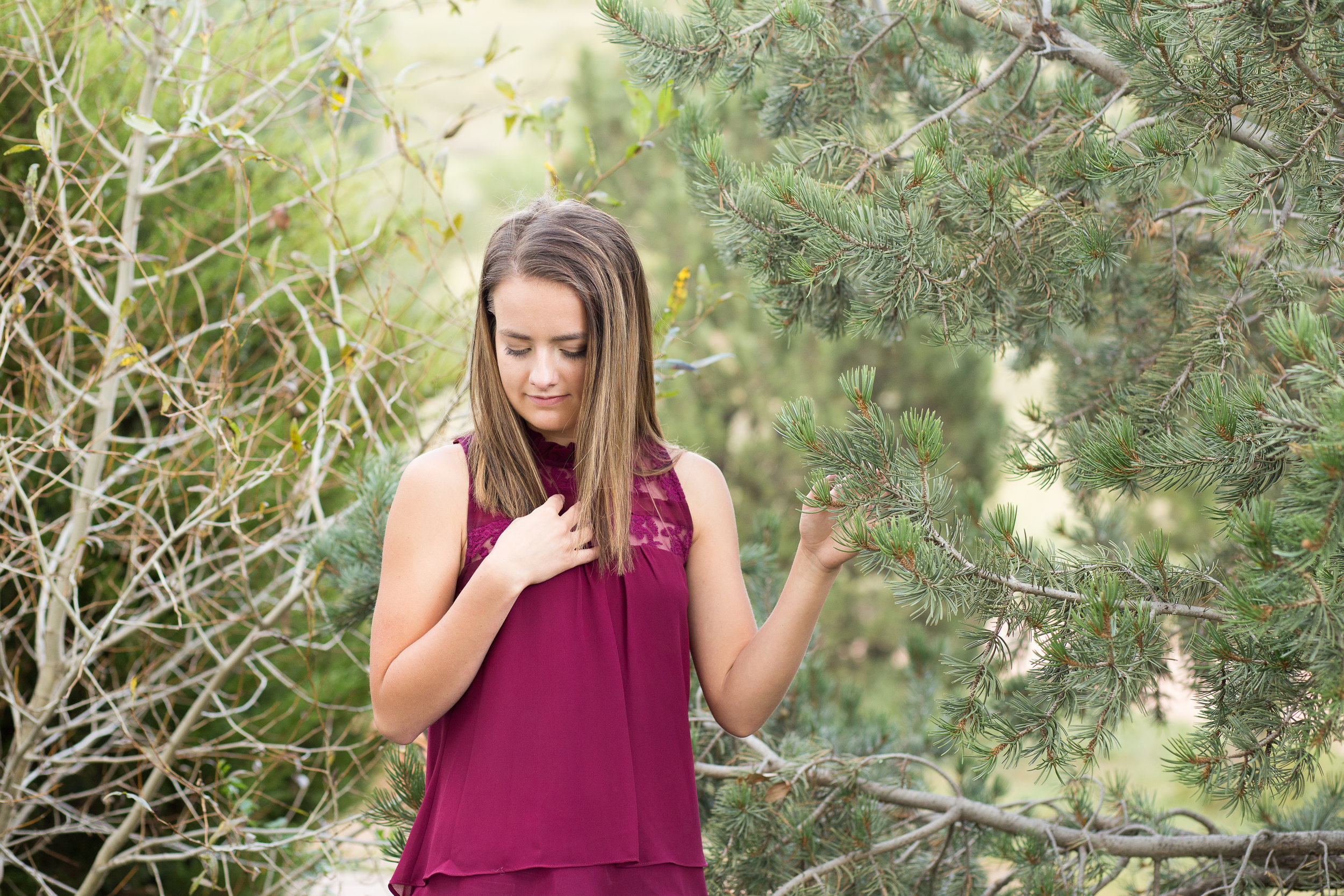 Girl holding on to pine tree branch and looking at ground Rampart High Senior Photos Stacy Carosa Photography Colorado Springs Senior Photographer at Rock Ledge Ranch