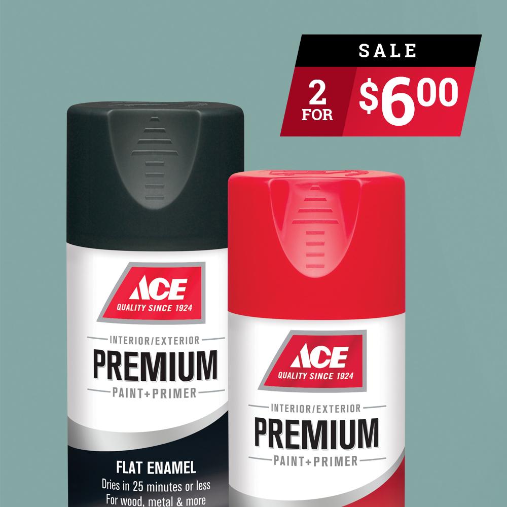 June 2019 - Ace Premium Spray Paint.jpg
