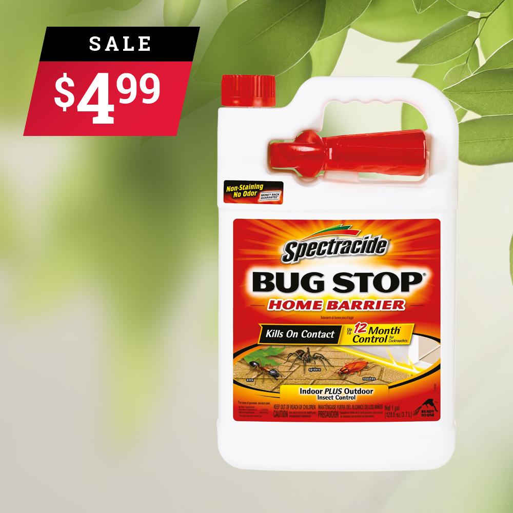 August 2019 - Bug Stop.jpg
