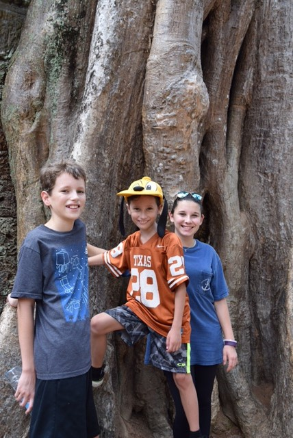 """Are we in a temple? Or a jungle forest? At Ta Prohm, the answer is simply, """"yes."""""""
