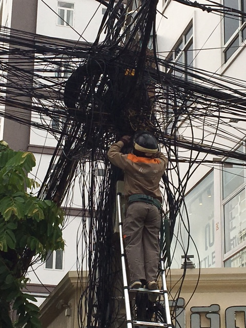 Phone wires? Or electric wires? Or squid ink spaghetti?