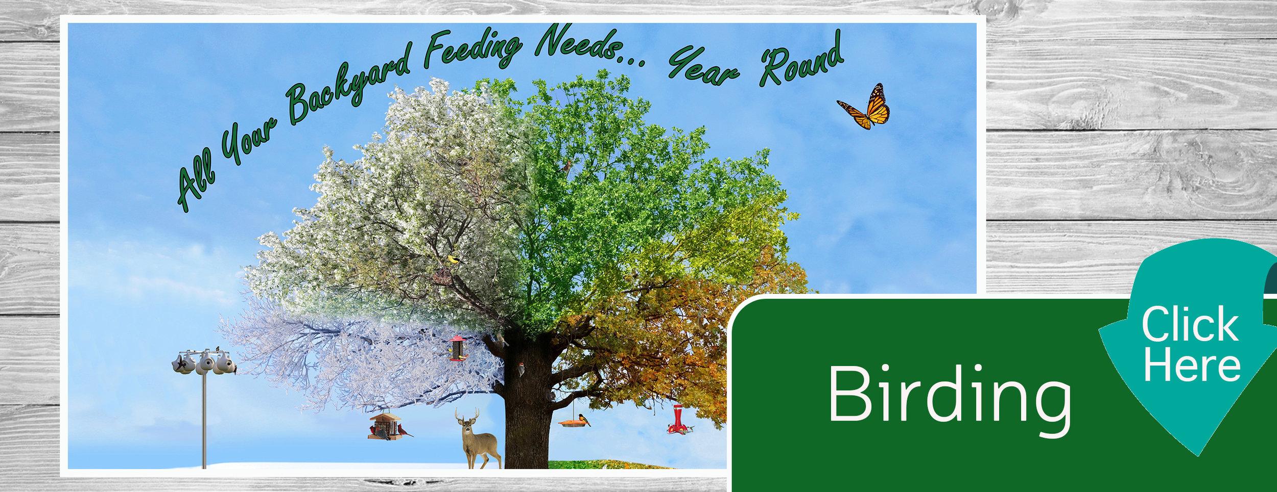 Birding Banner