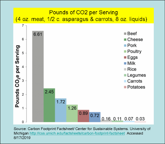 _2019 Pounds of CO2 per Serving.png