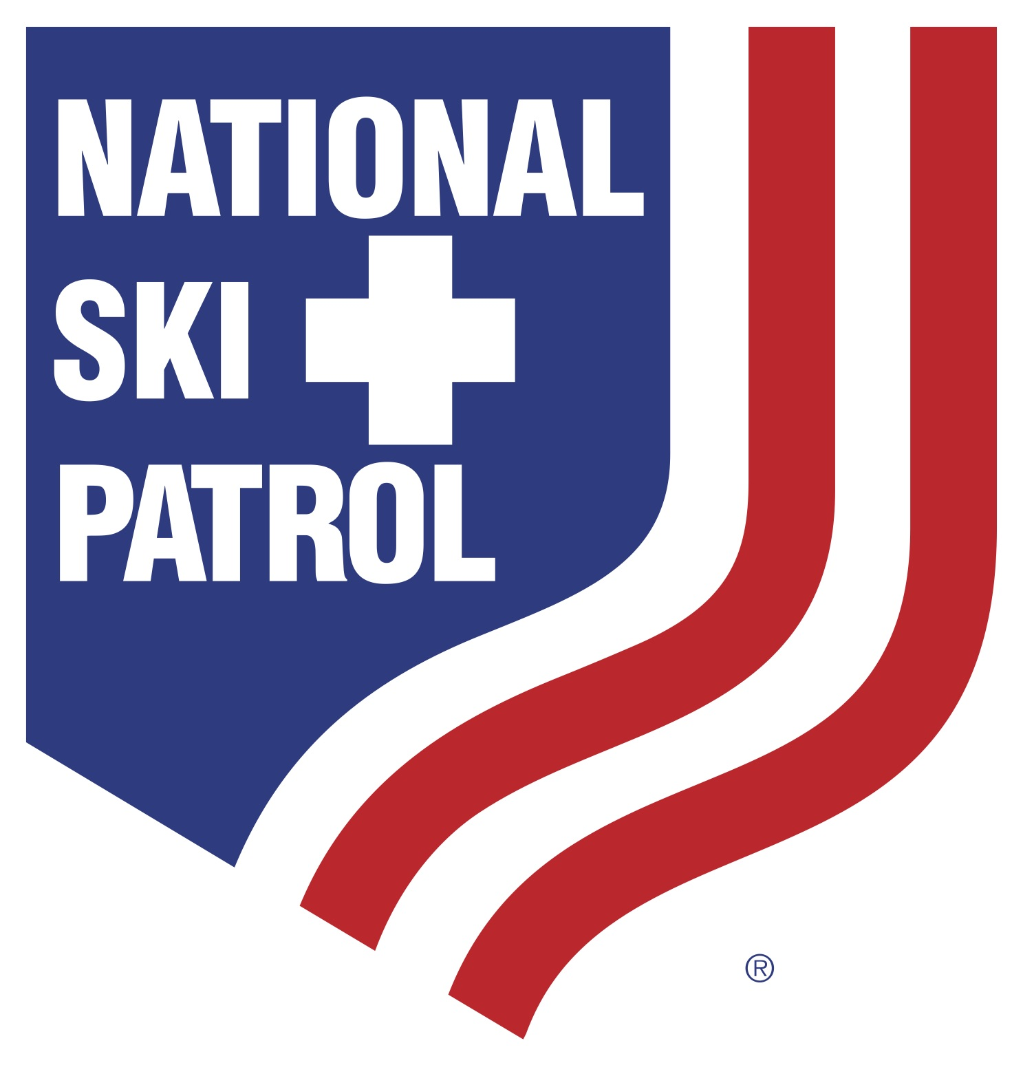 NSP_Logo_Large.jpg