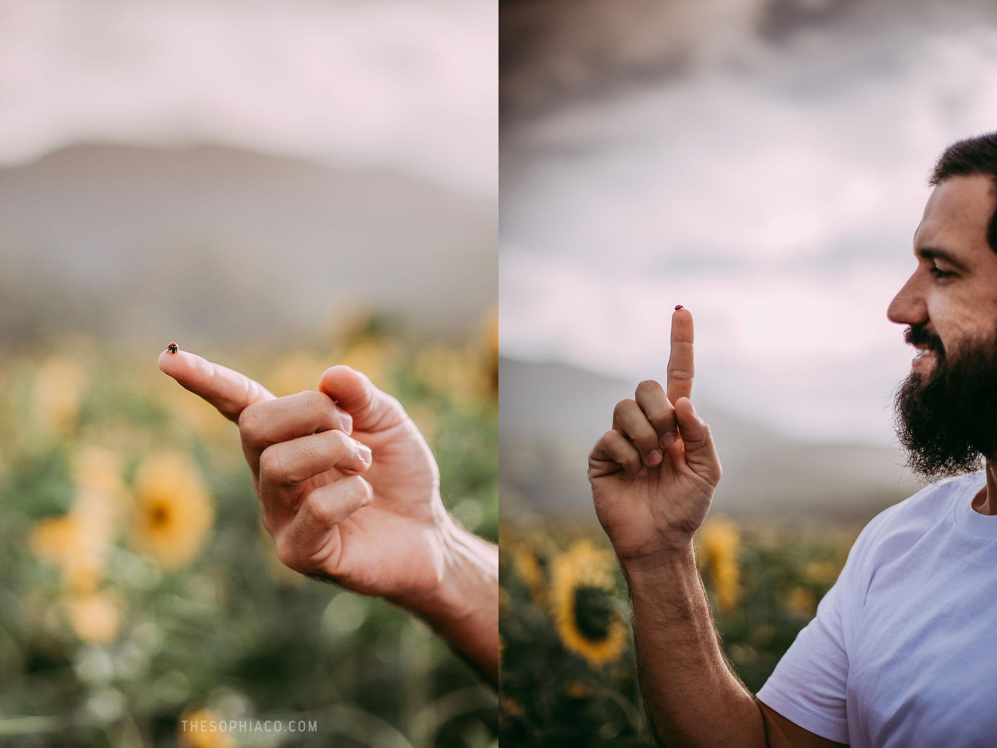 waialua-sunflowers-oahu-family-photography-02.jpg