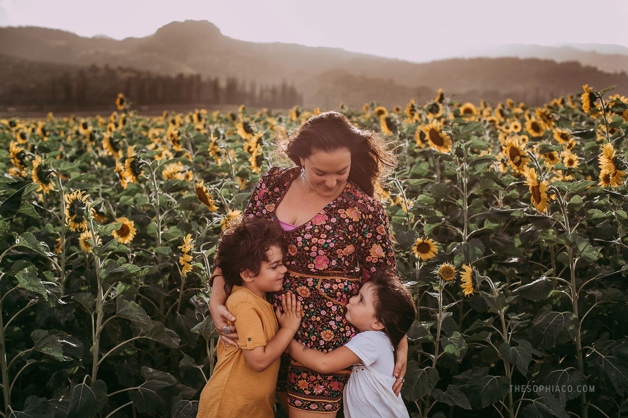 waialua-sunflowers-oahu-family-photography-05.jpg