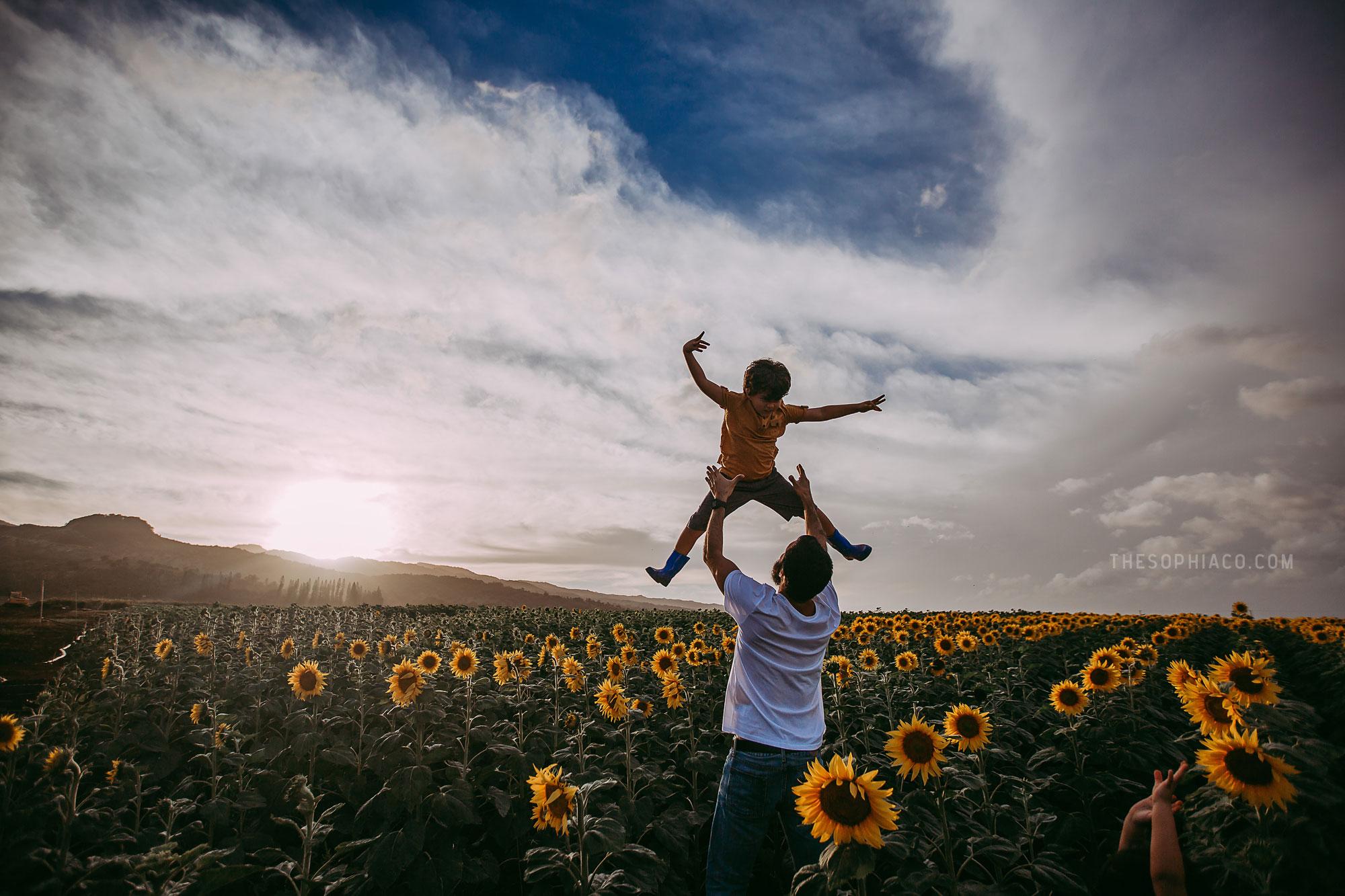 waialua-sunflowers-oahu-family-photography-19.jpg