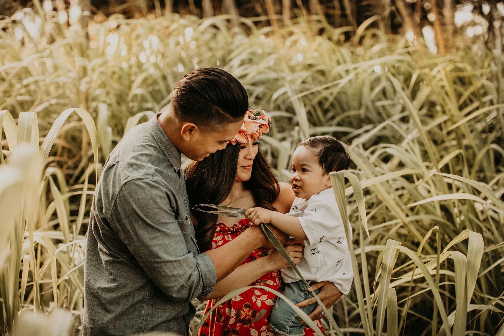 palm-tree-jungle-oahu-family-photographer-23.jpg