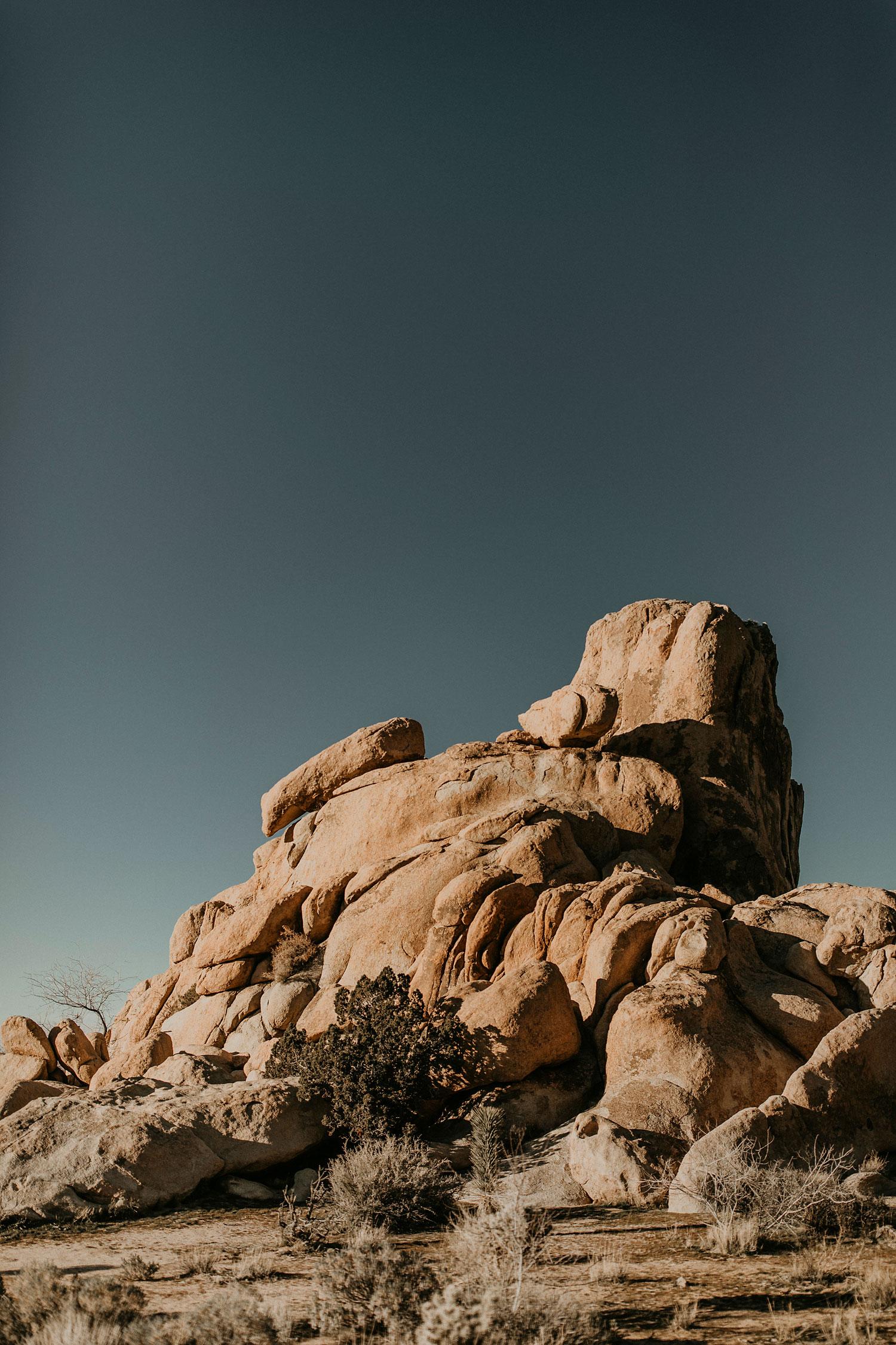 Joshua-Tree-Travel-Photographer-Self-Portraits-02.jpg