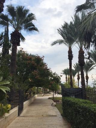 Mount Of Beatitudes -Israel
