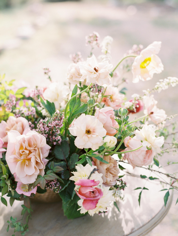 Garden Roses Fine Art Florals by Finding Flora