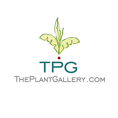 theplantgallery.png
