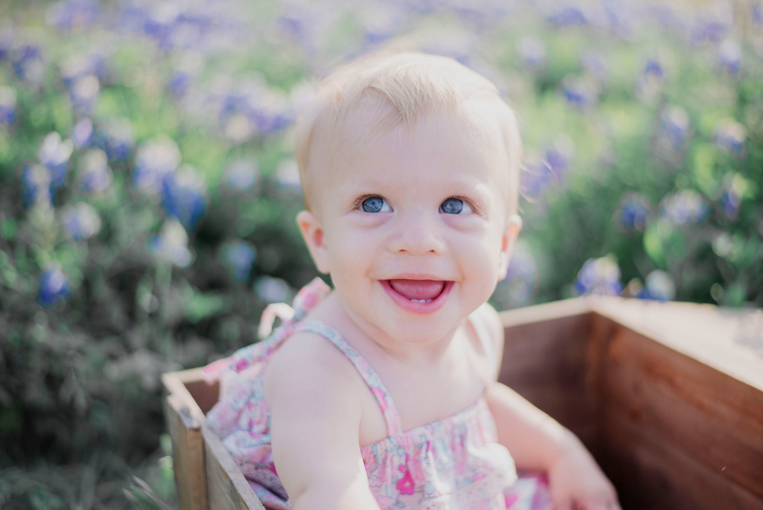 Austin Portrait Photographer First Birthday Session Texas Wildflowers Bluebonnets026.jpg