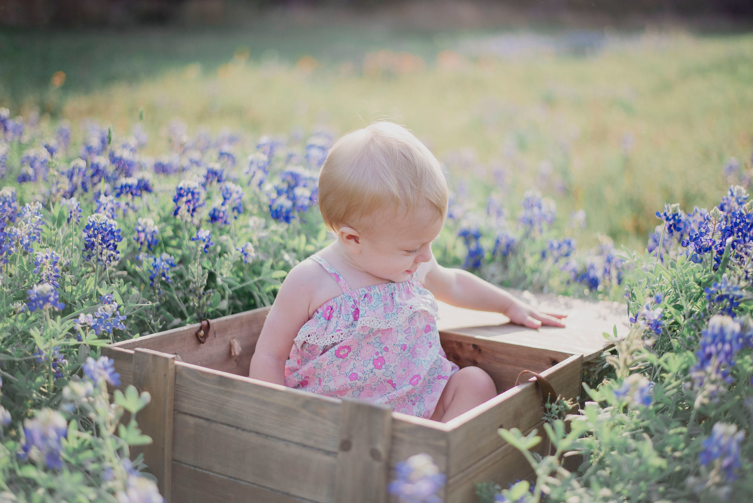 Austin Portrait Photographer First Birthday Session Texas Wildflowers Bluebonnets029.jpg