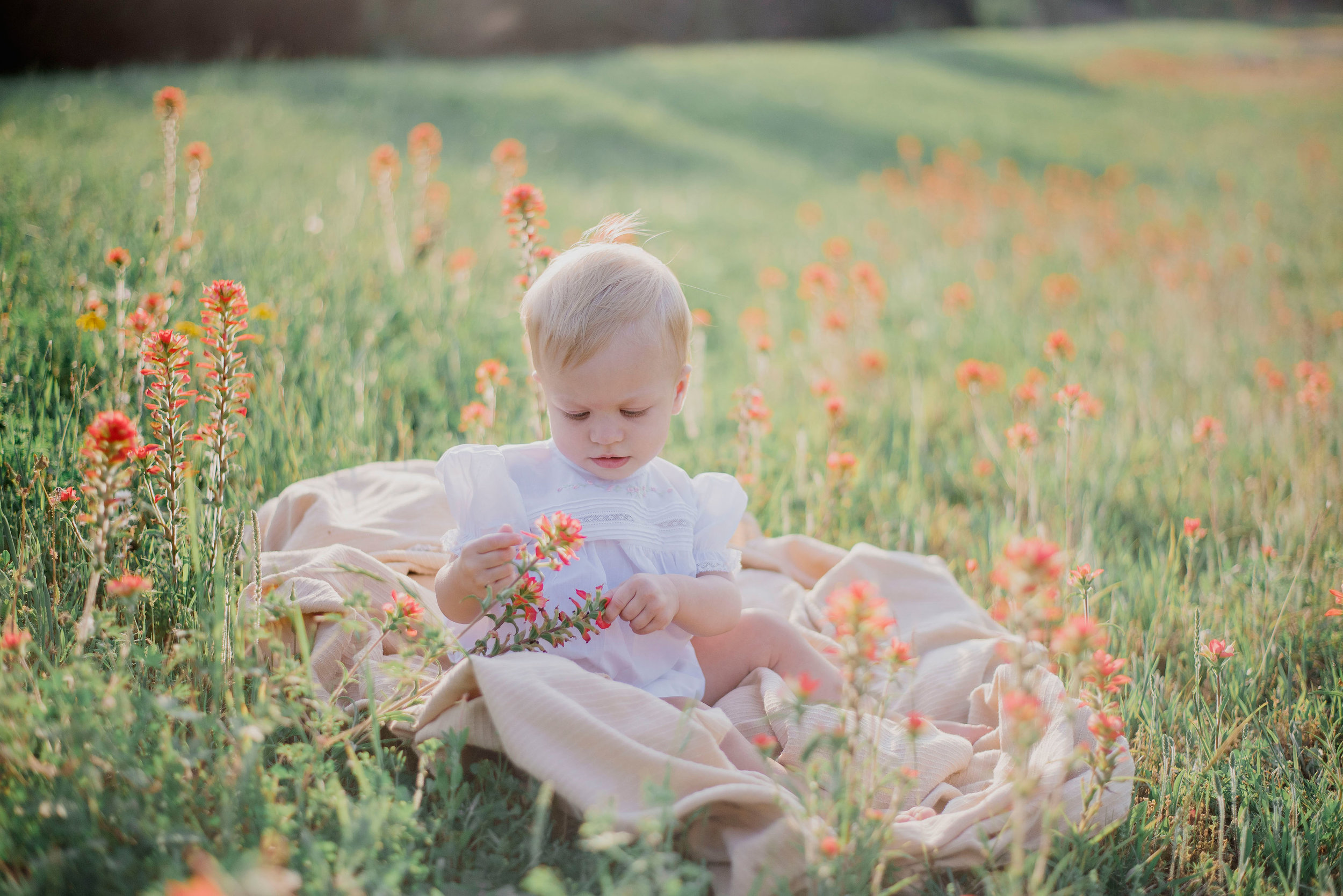 Austin Portrait Photographer First Birthday Session Texas Wildflowers Bluebonnets050.jpg