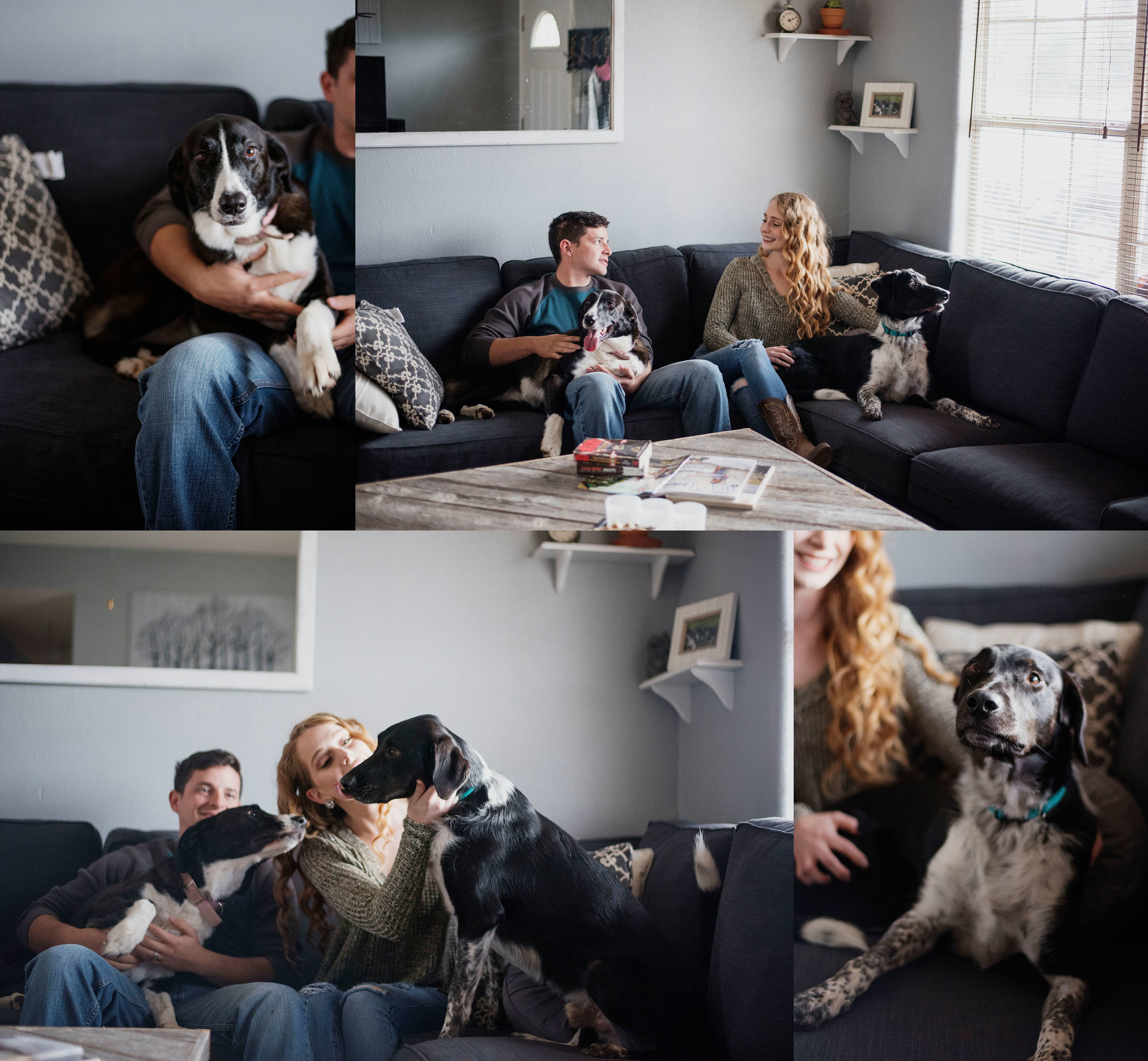 EffJay Photography Lees Summit Family Photographer inhome Lifestyle Session with dogs006.jpg