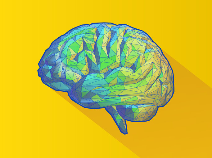 small size yellow and pink brain.jpg