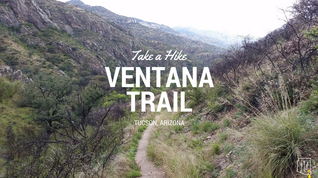 Picture of: Hike Ventana Trail Tucson Arizona Hikers Guide