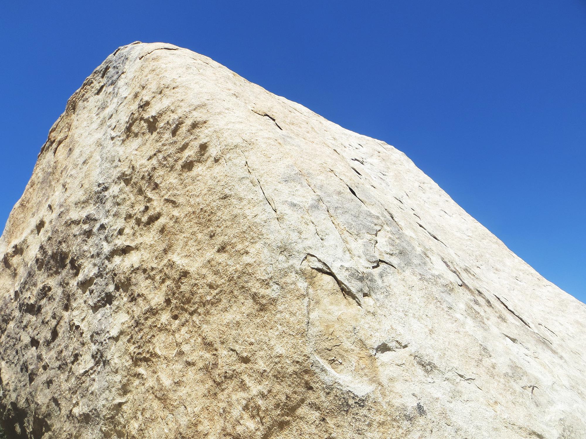 Joshua Tree Rock