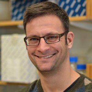 Marc Mendillo, PhD  Assistant Professor   Education  :  Boston University (BA), UC San Diego (PhD)  Hometown  :  New York, NY