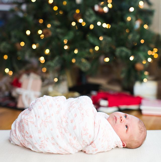 We welcomed our baby girl to the world on December 16, perfectly in time for Christmas! 🎄💗✨ And a huge thank you to @jackiecooperphoto for capturing our first family photos in such a beautiful way!