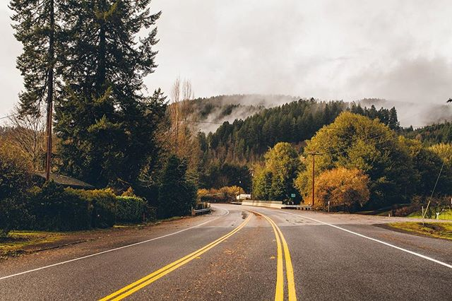 See you soon Oregon! 🌲 . . . . . . . . .  #vsco #vscogood #vscogram #vscodaily #oregon #oregoncoast #oregonexplored #beach #lookslikefilm #travel #azphotographer