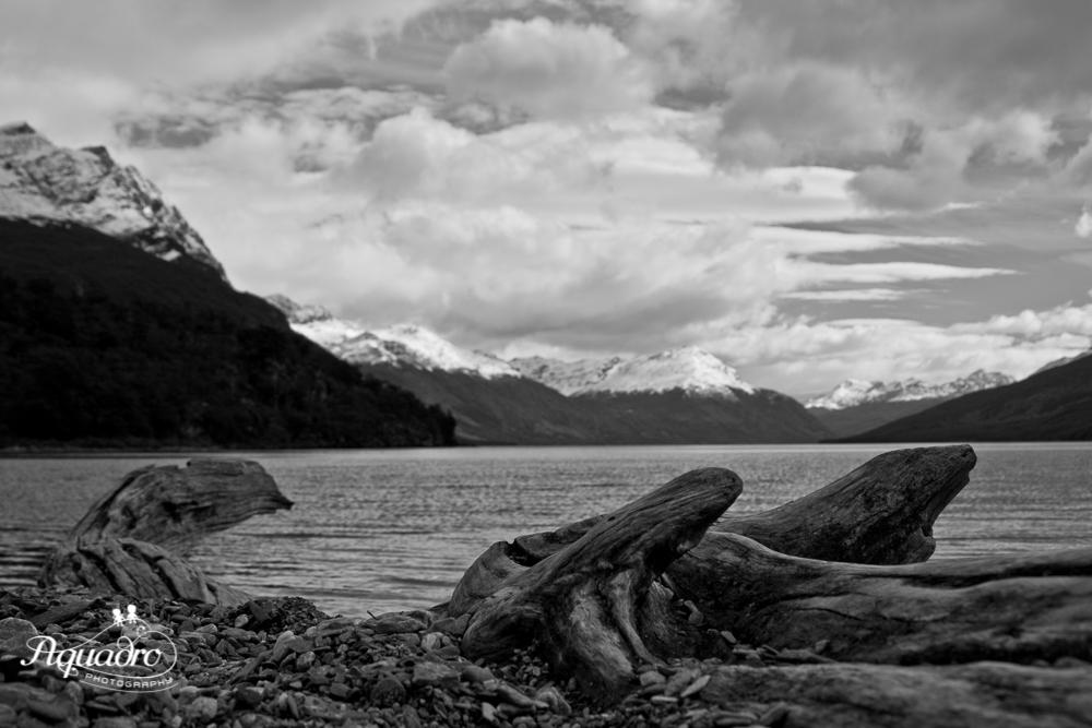 Lago Roca Shoreline