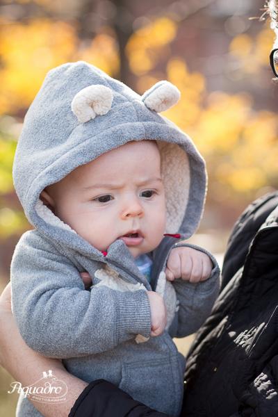 Baby Bear in Brooklyn