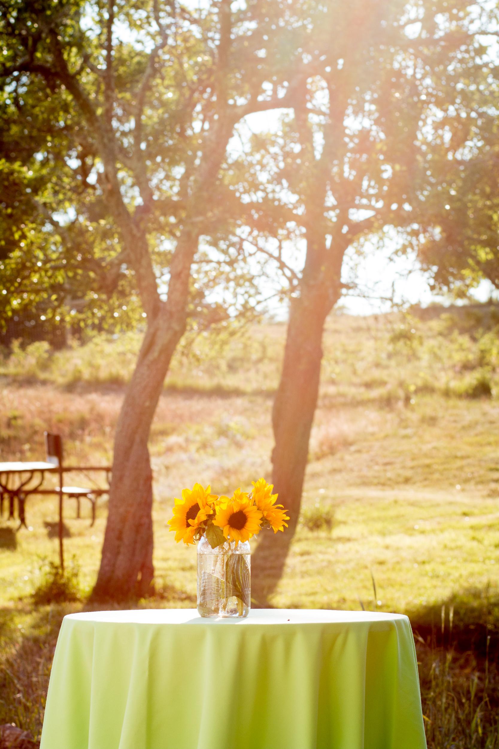 sunflower cocktail hour