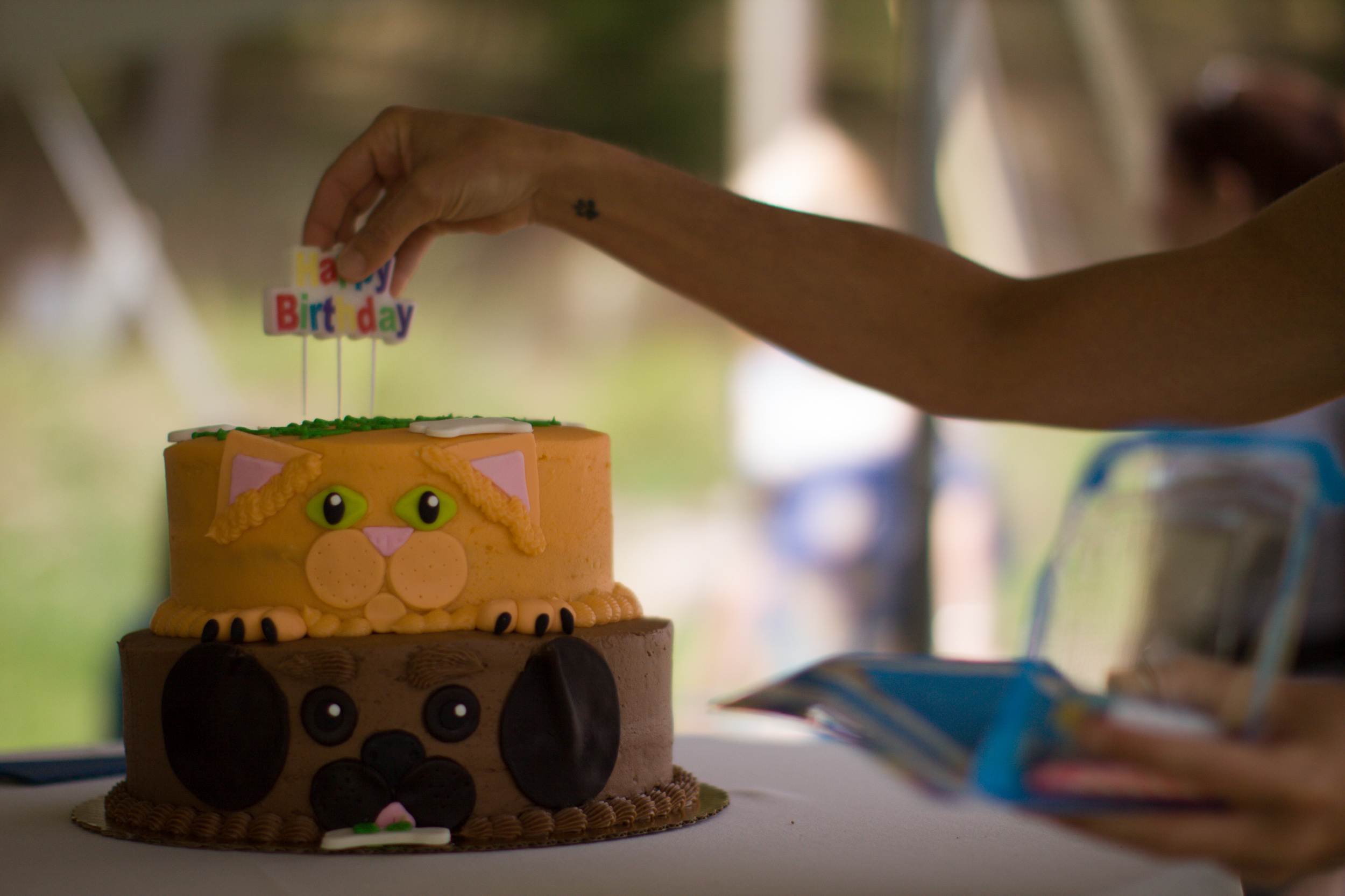 Celebration for Animal Shelter Spring Party