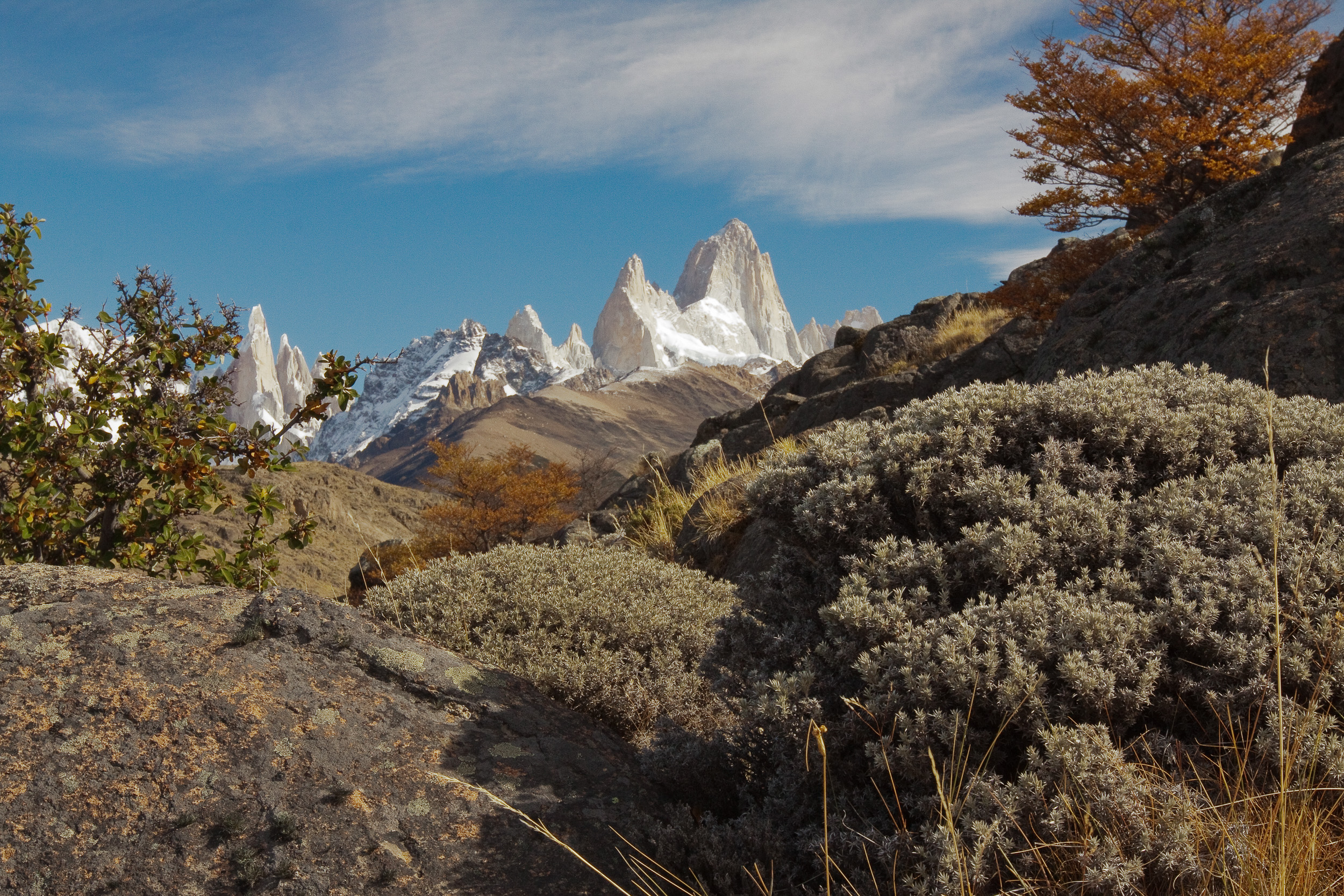 Autumn Fitz Roy
