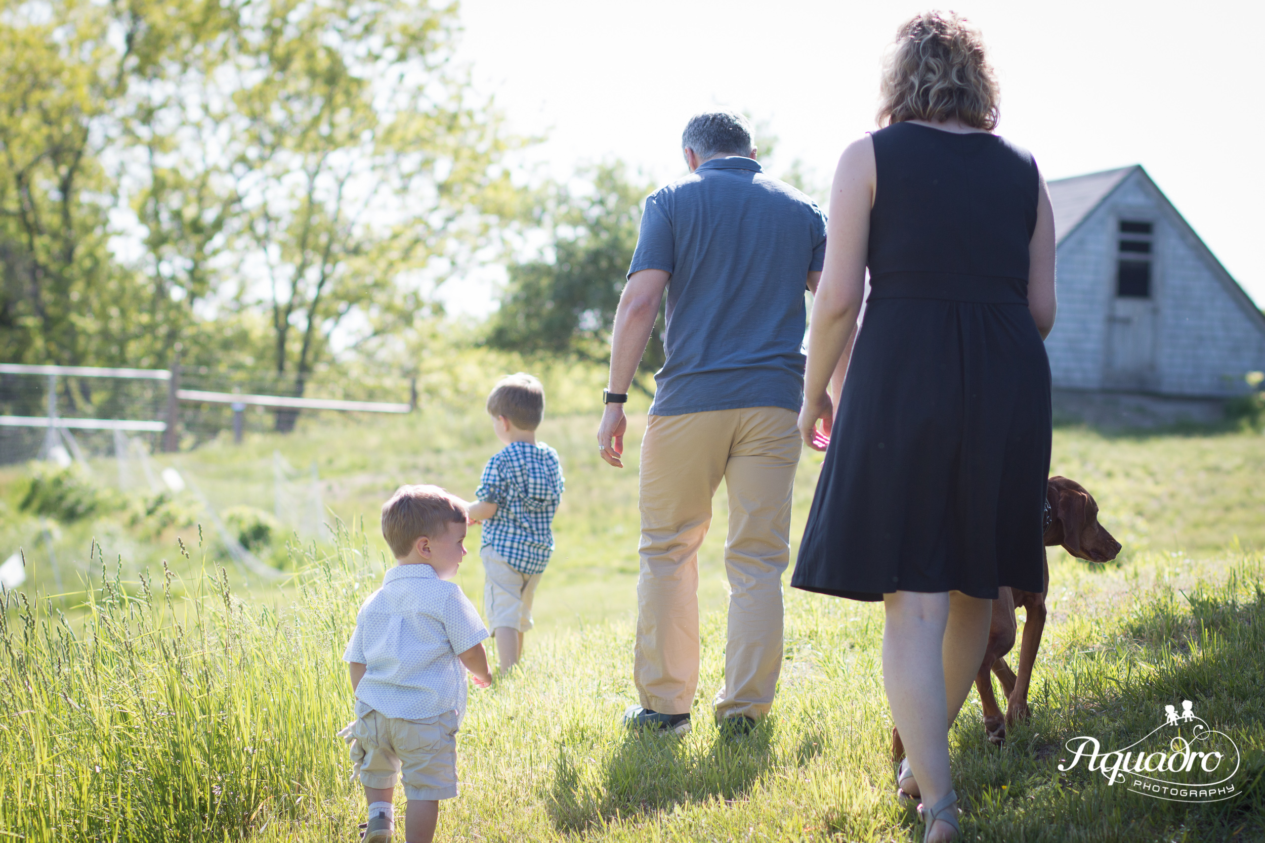 Family Walking Into the Sun