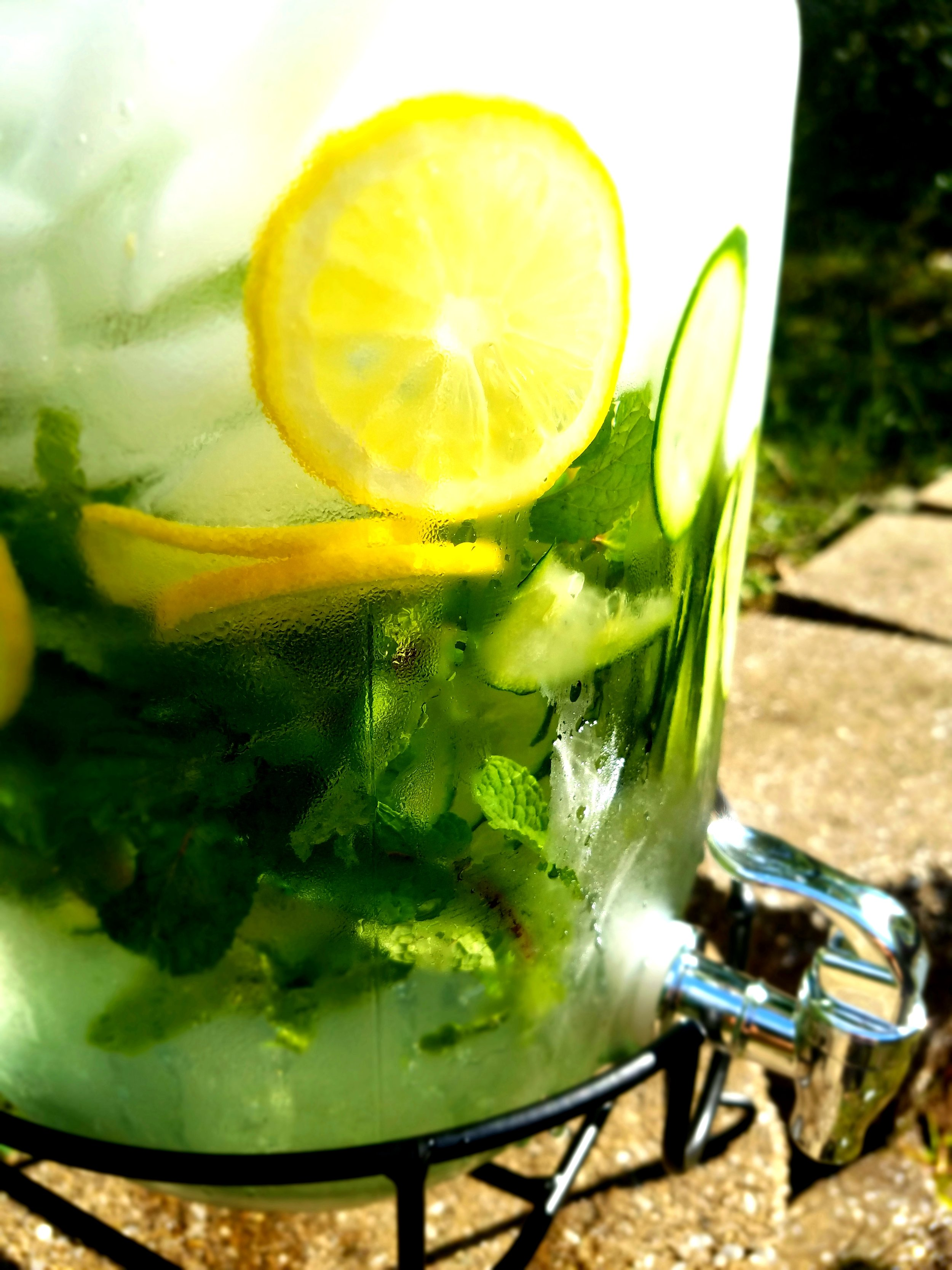 Spring Water dispenser infused with Fresh Herbs & Fruits