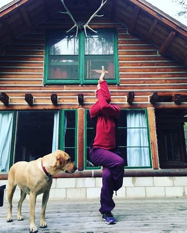 "Not telling who ""we"" are routing for in Sunday's Super Bowl. #garudasana #eaglepose #philadelphiaeaglepose #iactuallydontcare #illbehikinganyway . . . . . . #yoga #asana #everylimbofyoga #alleightlimbs #wyoming #bighornmountains #yogateacher #yogaworks"