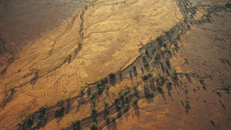 Mutawintji National Park.  Image: NSW National Parks and Wildlife Service