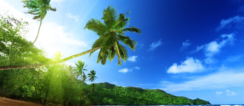 Unwind In Fiji